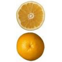 Grapefruit (White)